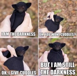 Black bat, apparently infant, held in hands for 4 frames, saying: I am the darkness; Oh, you want cuddles? OK, I give cuddles; but I am still the darkness.